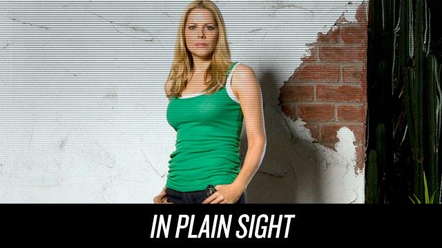 Watch In Plain Sight on Netflix Instant