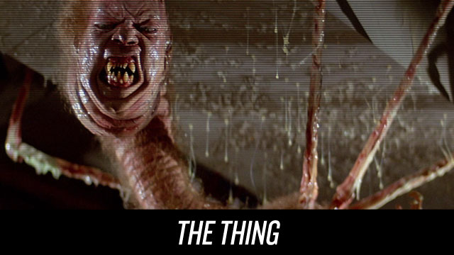 Watch The Thing on Netflix Instant