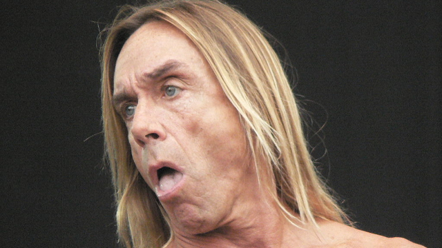 Iggy Pop and the Seven Dwarves