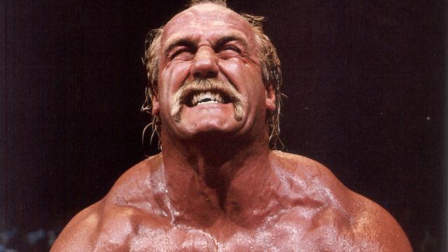 Hulk Hogan Sex.com Offer