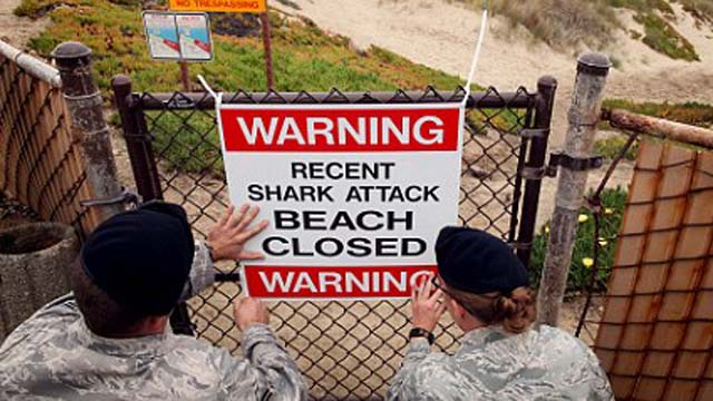 Shark attack, Santa Barbara, Lompoc, Vandenberg Air Base.