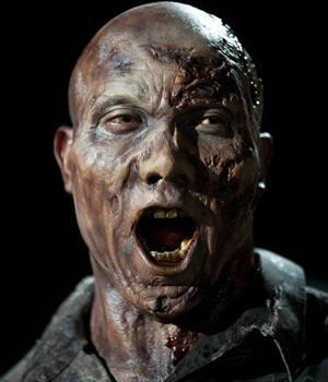 Anderson Cooper, Norman Reedus, Daryl Dixon, The Walking Dead, Hines Ward