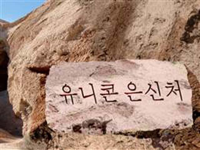 Unicorn Sign, North Korea, Kim Jong Un.