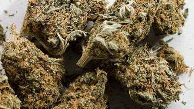 Marijuana, Marijuana Delivered to Kmart, Kmart