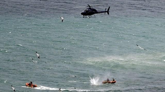 Adam Strange, New Zealand, Shark Attack