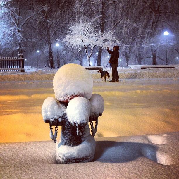 Best Winter Storm Nemo Photos on Instagram & Twitter, Winter Storm Nemo, Nemo, Winter Storm 2013