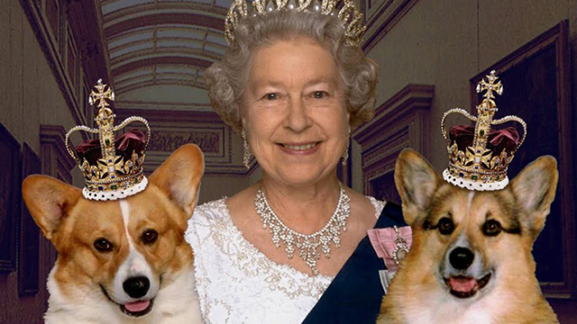 Canada monarchy, why does Canada still have the monarchy, why does Canada still have a queen, does Canada still have a queen, Canadian monarchy, queen of England, queen of Canada, Canada, monarchy, England, united kingdom, why Canada should get rid of the monarchy, why Canada doesn't need the monarchy, why Canada doesn't need a queen, king William, queen Kate, queen Elizabeth, Canada queen, colonialism in Canada, Canadian monarchists, Canada monarchists, Canada politics, Canada governor general, what does a governor general do, who is Canada's head of state, who is Canada's governor general, Stephen Harper, Canada conservatives, Canadian senior citizens, why do senior citizens love the queen, why do old people love the queen, William and Kate Canada, prince charles, will prince charles be the king, king charles,
