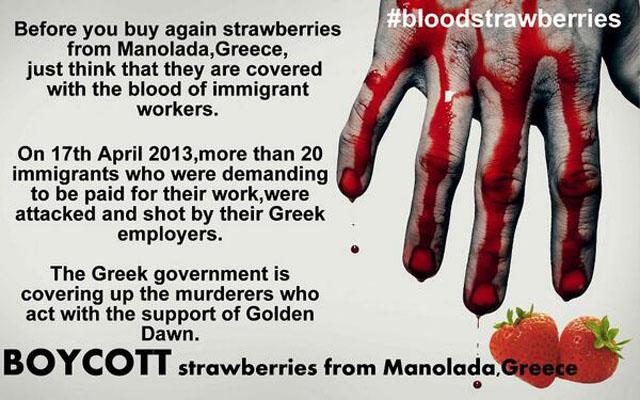 manolada, blood, strawberry, strawberries, migrant, workers, bloodstrawberries