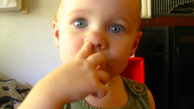 nose picking, nose picking health, nose picking science, nose picking good for you, boogers, boogers health, picking nose and eating it, eating boogers, eating snot, picking nose healthy, picking your nose and eating it, is eating boogers good for you?, nose health, picking nose health
