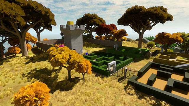 The Witness Game