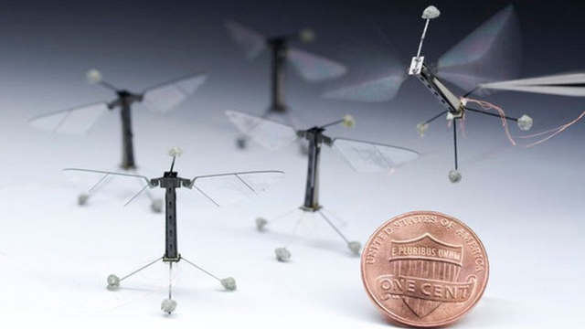 Robotic Fly
