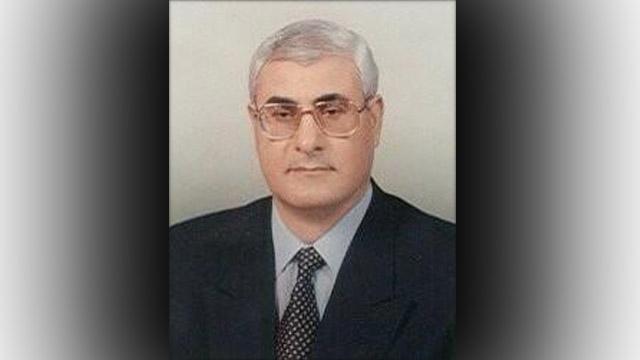 Adly Mansour New President Egypt