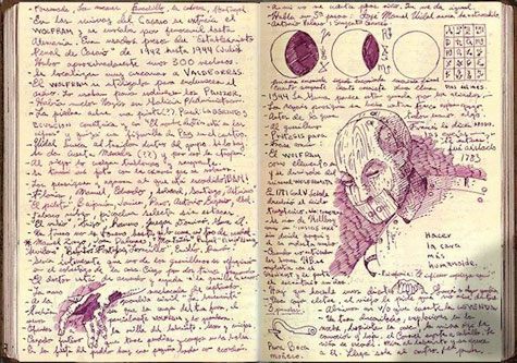 del-toro-book