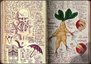 del-toro-book2-OPTI