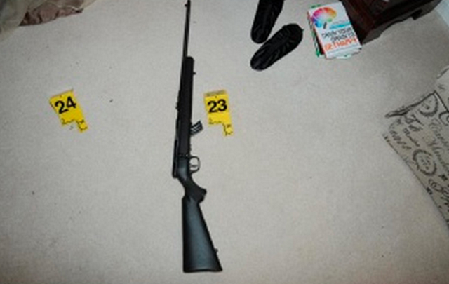 Adam Lanza Nancy Lanza murder weapon