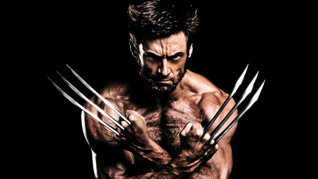 The Wolverine 2