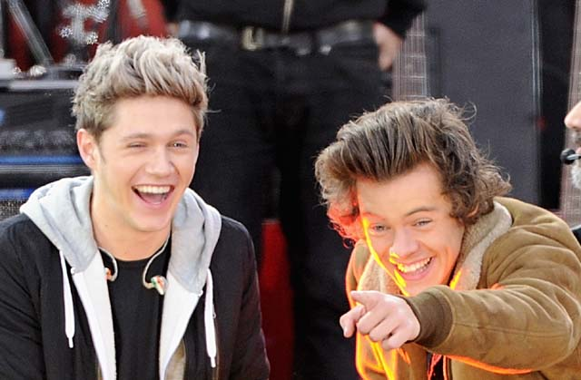 Niall Horan and Harry Styles of One Direction (Getty)