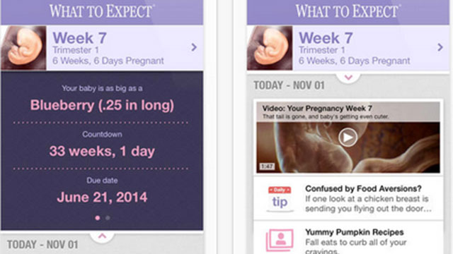 what to expect pregnancy iphone app
