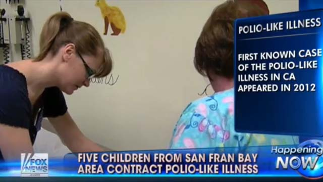 (Screenshot via Fox News)