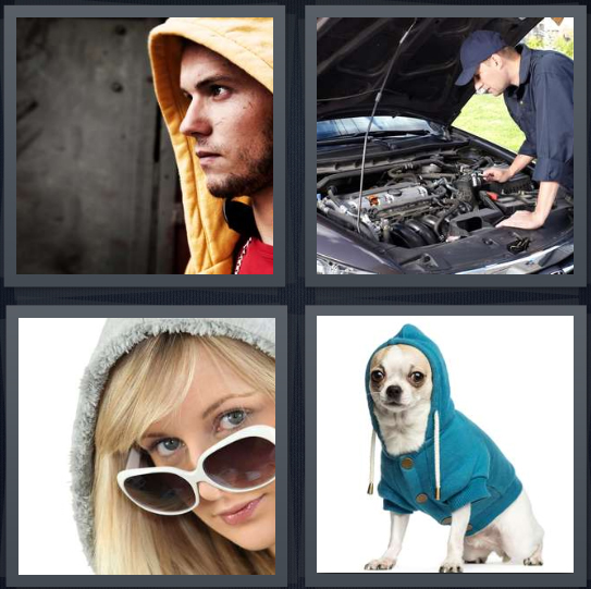 4 Pics 1 Word Answer 4 letters for man wearing yellow hoodie, man fixing car engine, woman in sunglasses and gray sweatshirt, dog in blue sweatshirt