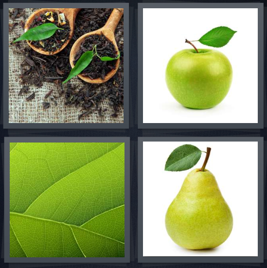 4 Pics 1 Word Answer 4 letters for potted plants in soil, green apple, veins on plant, pear with stem