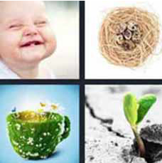 4 Pics 1 Word Answer 4 letters for baby smiling, nest with eggs, plant with butterflies, sprout in pavement