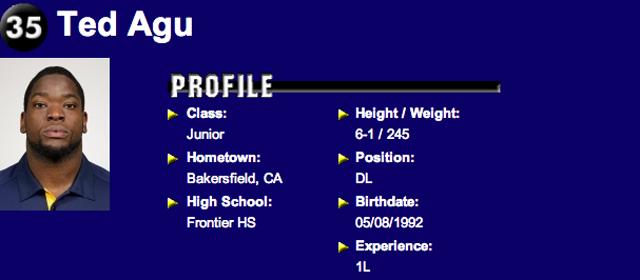 Ted Agu Profile Pic