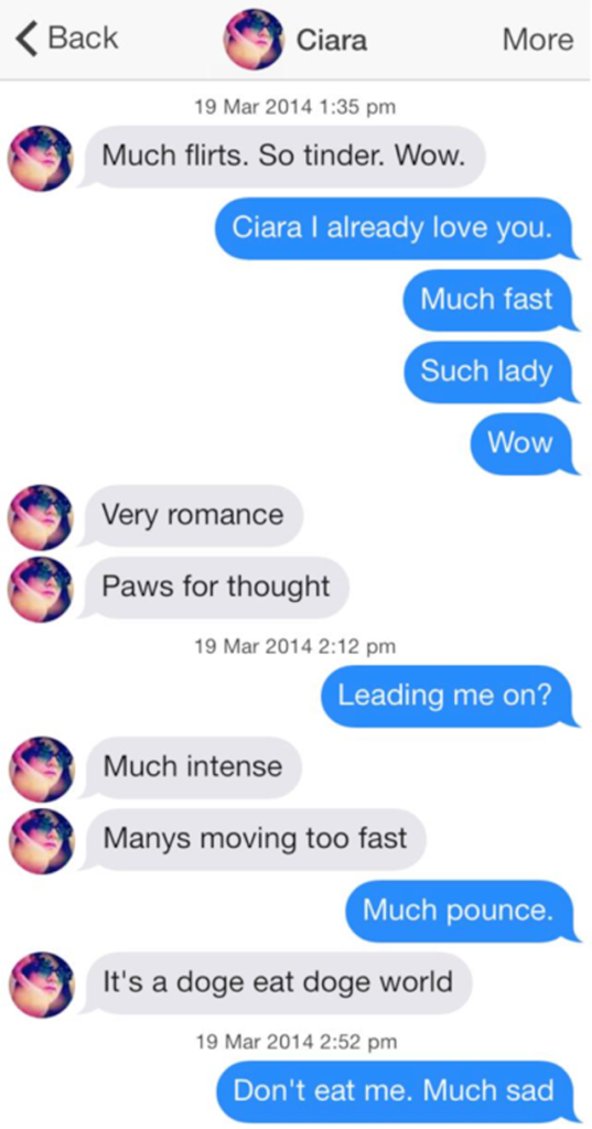 lonely doge tumblr, funny doge memes