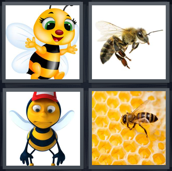 4 Pics 1 Word Answer 4 letters for wasp with wings cartoon, insect close up on white background, honey maker, honey comb with bug