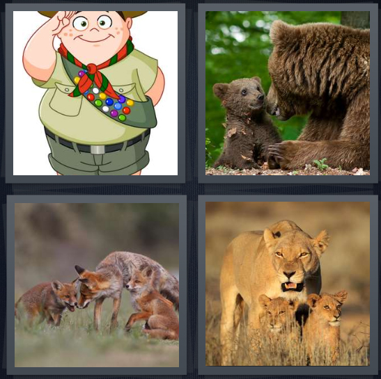 4 Pics 1 Word Answer 3 letters for cartoon scout with vest, mama bear with babies, wolf pack, lion pack