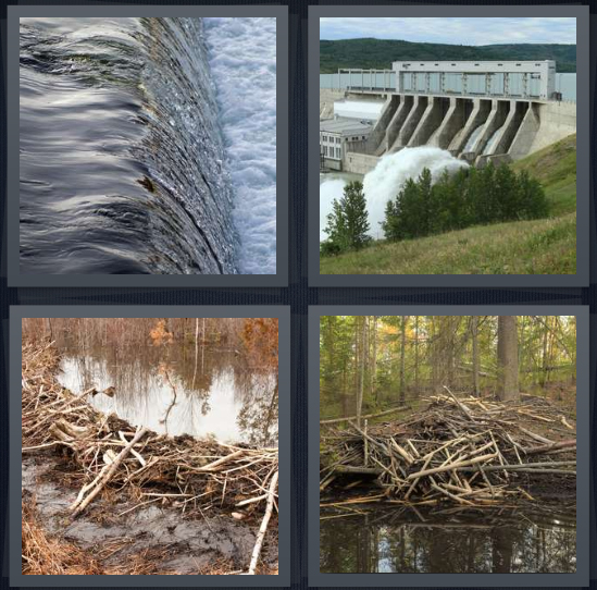 4 Pics 1 Word Answer 3 letters for water rushing over edge, river stopped up, beaver house, beaver in woods