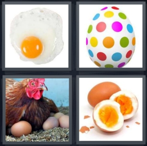 4 Pics 1 Word Answer 3 letters for over easy yolk, painted Easter decoration, hen in coop, hard boiled with shell