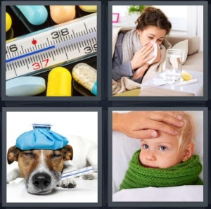 4 Pics 1 Word Answer 5 letters for thermometer reading high temperature, woman with flu, sick dog with water bottle heater, child with cold