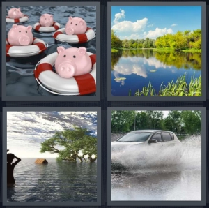 4 Pics 1 Word Answer 5 letters for pigs in lifesavers in water, water in swamp or lake, emergency situation, car driving through water splashing