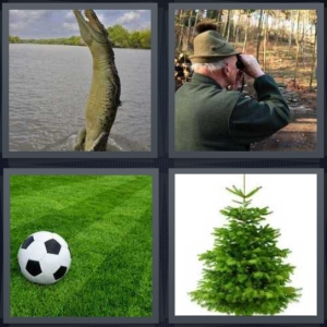 4 Pics 1 Word answers, 4 Pics 1 Word cheats, 4 Pics 1 Word 5 letters alligator leaping out of water, man in woods with binoculars birdwatching, soccer ball on field, Christmas pine tree