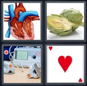 4 Pics 1 Word Answer 5 letters for drawing of organ with valves, artichoke split in half, defibrillator machine, ace card