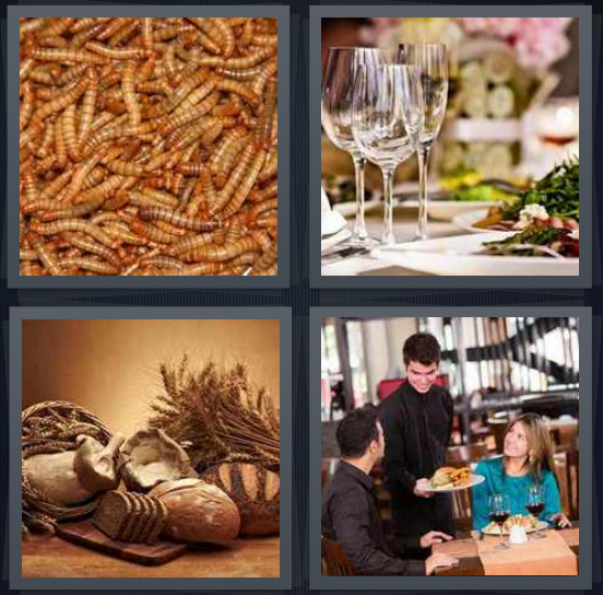 4 Pics 1 Word Answer 4 letters for brown maggots, dinner with champagne flutes, grains with bread and wheat, couple at restaurant with waiter