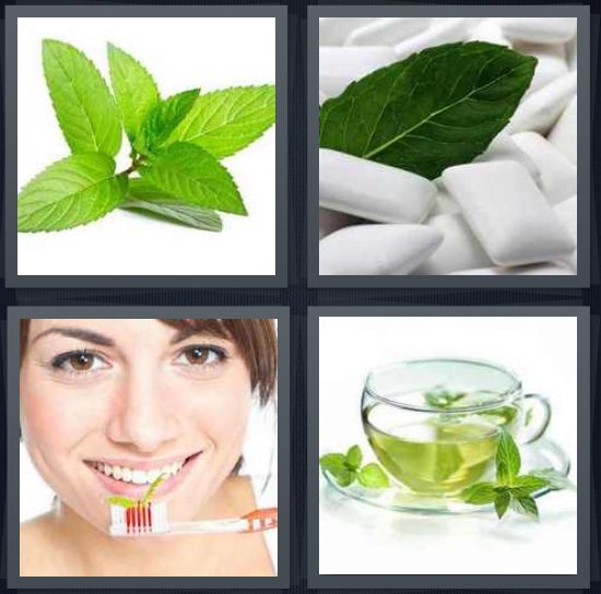 4 Pics 1 Word Answer 4 letters for spearmint leaves, gum chiclets, woman with toothbrush brushing teeth, tea in glass cup