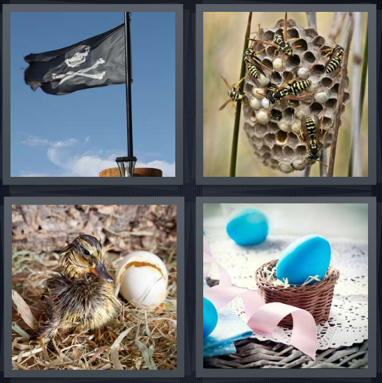 4 Pics 1 Word Answer 4 letters for pirate flag jolly rancher, bee hive with honey, recently hatched duck, blue Easter eggs