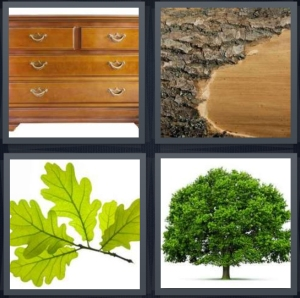 4 Pics 1 Word Answer 3 letters for wood dresser with brass handles, bark from tree, group of leaves on white background, large tree on white background