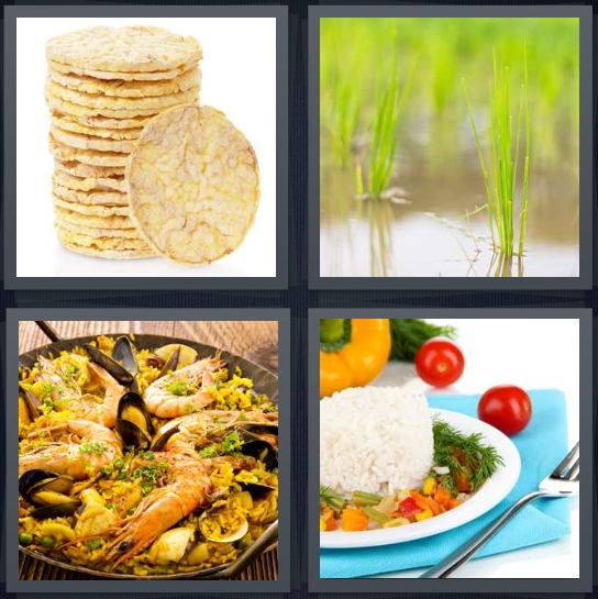4 Pics 1 Word Answer 4 letters for dried cake, flooded patty, shrimp paella, starch with vegetables
