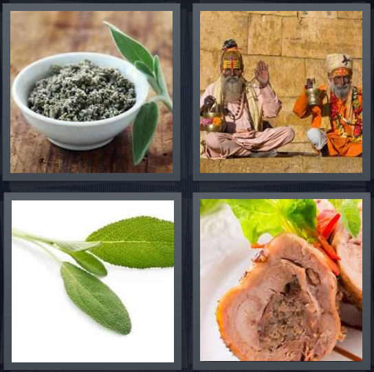 4 Pics 1 Word Answer 4 letters for herbs for cooking, holy men in India, leaf of plant, pork roll