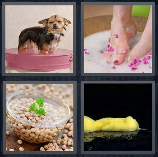 4 Pics 1 Word Answer 4 letters for dog in pink tub, woman feet pedicure, beans in water, wet yellow sponge on black background