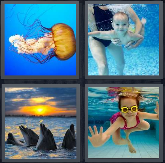 4 Pics 1 Word Answer 4 letters for jellyfish underwater in ocean, baby in pool learning, whales in ocean at sunset, girl with goggles in pool