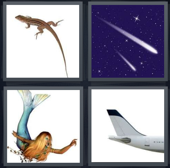 4 Pics 1 Word Answer 4 letters for brown lizard on white background, comet in space with stars, mermaid with blond hair, end of airplane