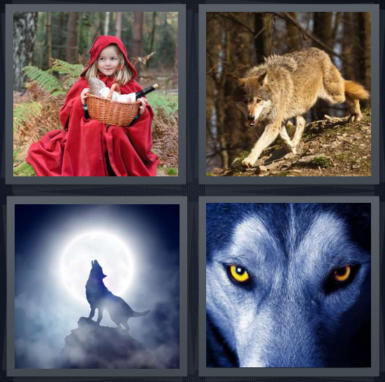 4 Pics 1 Word Answer 4 letters for Little Red Riding Hood in woods with basket, forest dog walking, howling at moon, dog with yellow eyes