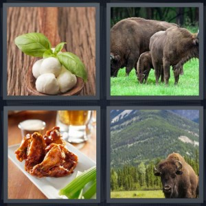 4 Pics 1 Word Answer 7 letters for mozzarella cheese in water, bison on plains, wings with hot sauce and celery, mountain and bison in Colorado