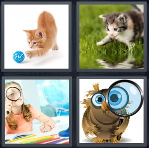 4 Pics 1 Word Answer 7 letters for cat with ball of string, kitten playing outside, girl with magnifying glass, owl with glass