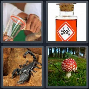4 Pics 1 Word Answer 6 letters for snake biting plastic venom, toxic jar of liquid, scorpion with long curled tail, red mushroom in woods