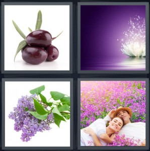 4 Pics 1 Word Answer 6 letters for eggplants with green leaves, lotus opening with stars, bunch of lilacs, couple laying in field of flowers
